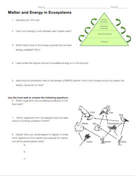 This review worksheet covers: food webs, trophic pyramids, transfer of energy, how carbon cycles through photosynthesis and cellular respiration, and ATP.  I have uploaded it in a .docx format so you can edit and differentiate it to fit your classroom and students' needs.