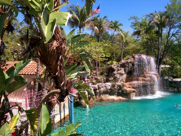 17 best images about coral gables venetian pool on for Pool show coral gables