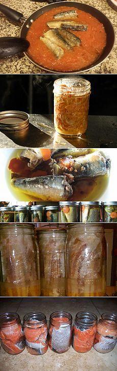 Домашние рыбные консервы