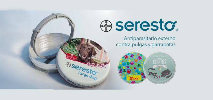 8 meses de protección contra pulgas y garrapatas gracias al collar Seresto. ¡Y además consigue tu adhesivo personalizado  #perros #gatos #mascotas #animales #perro #gato #felinos #canes #miperromola #migatimola #amoamiperro #amoamigato