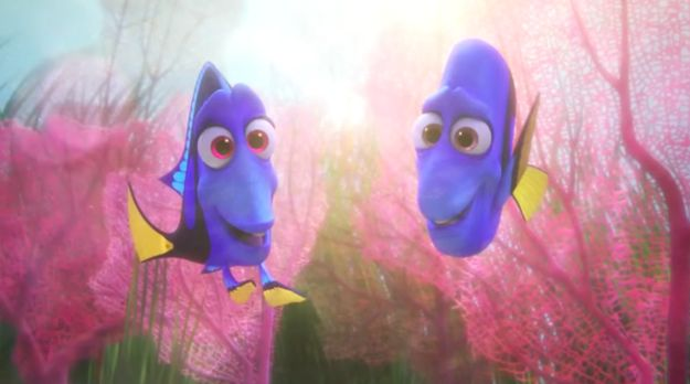 "What does this trailer reveal? Well, these two appear to be Dory's parents, who she's forgotten about. | The Full Trailer For ""Finding Dory"" Is Finally, Finally, Finally Here"