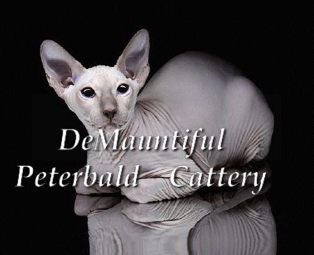 http://DeMauntiful.rus.pet