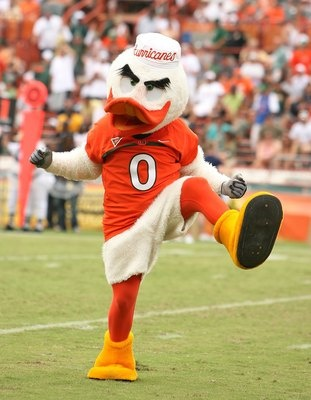Sebastian the Ibis Ranking the Greatest All-Time Traditions in Miami Hurricanes Football History  >>>  click the image to learn more...