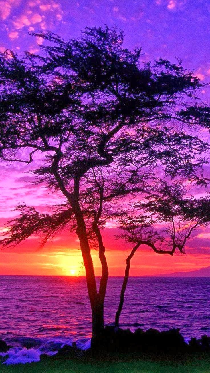 Pôr-do-sol em Mauí, no Havaí.