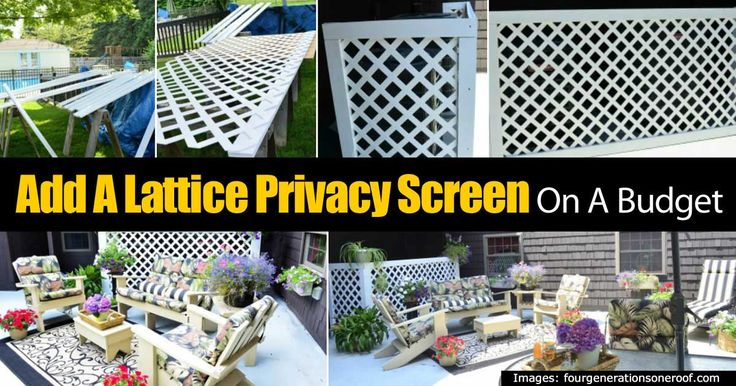 """Sometimes you need a privacy screen to hide items like AC units and trash cans or possibly a neighbor you just don't get along with. For whatever the reason you need something like an inexpensive privacy screen. Related Reading: """"Secret"""" Ways For Creating A Garden Privacy Screen This... #spr #sum"""