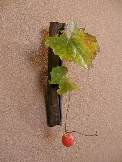 赤い実の画像:一花一葉 by アツシ
