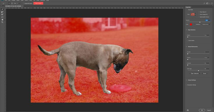 Adobe's AI-powered Photoshop update is a time-saver