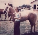 Meet America's Little Iron Horse - The Morgan Horse: My Morgan Welsh cross gelding as a two year old at a Morgan show.