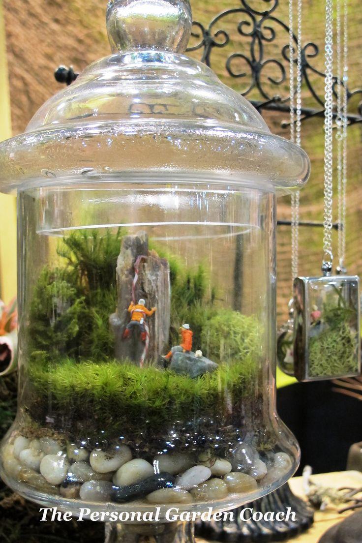 244 best terr rio terrarium plants images on pinterest garden terrarium miniature gardens and - Miniature terrarium decorations ...
