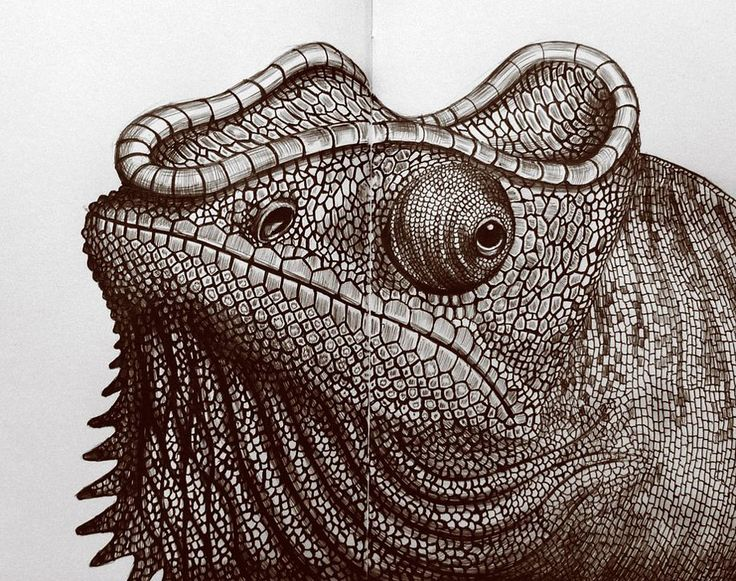 Incredibly Detailed #Pen & #Ink #Drawings by Tim Jeffs