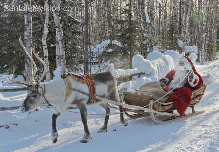 Der Weihnachtsmann genießt eine Rentierschlittenfahrt in Lappland in Finnland.