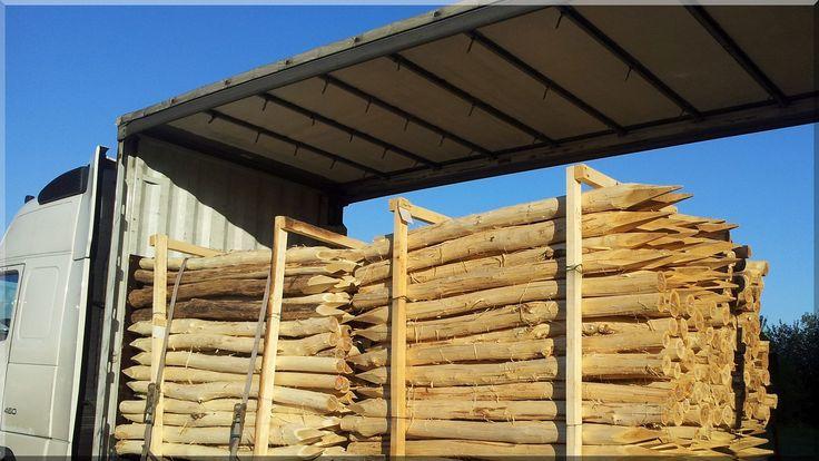 geschälte Holzpfahl