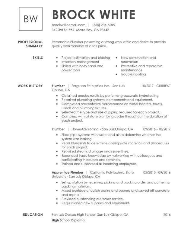 Best Basic Resume Samples In 2020 Simple Resume Examples Resume Skills Job Resume Template