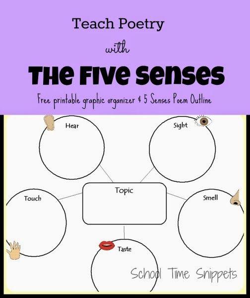5 senses poem