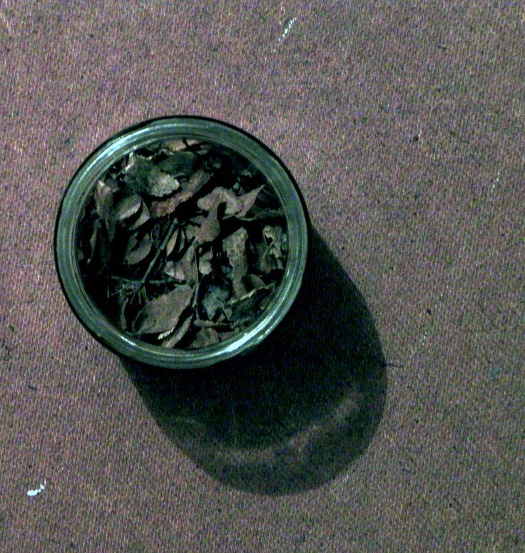 fraquito con hojas secas un regalo c:
