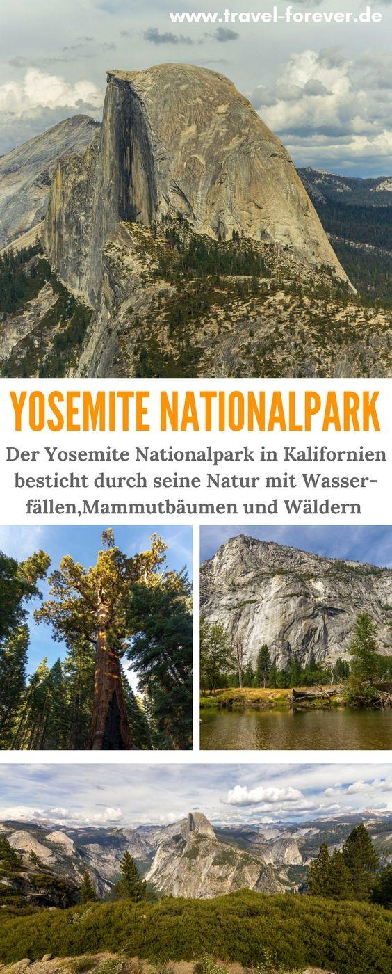Mammutbäume und Gletscher im Yosemite Nationalpark – Alle Infos!