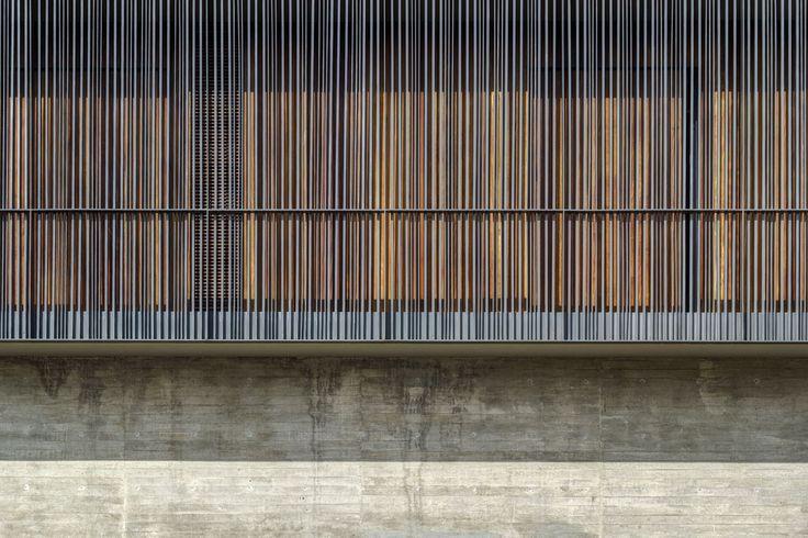 Galería de DTF Casa / Elías Rizo Arquitectos - 2