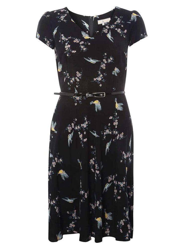 Womens **Billie & Blossom Multicoloured Bird Print Skater Dress- Multi Colour