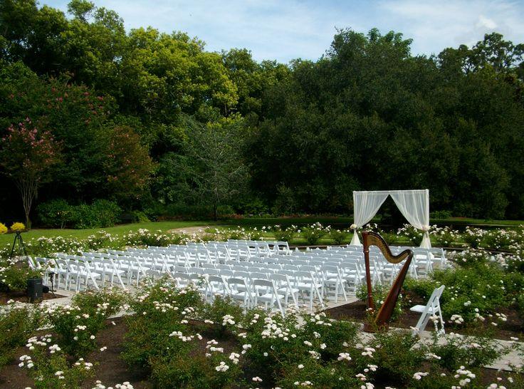 Leu Gardens wedding ceremony in the Rose Garden, Orlando, Florida. With Harpist music
