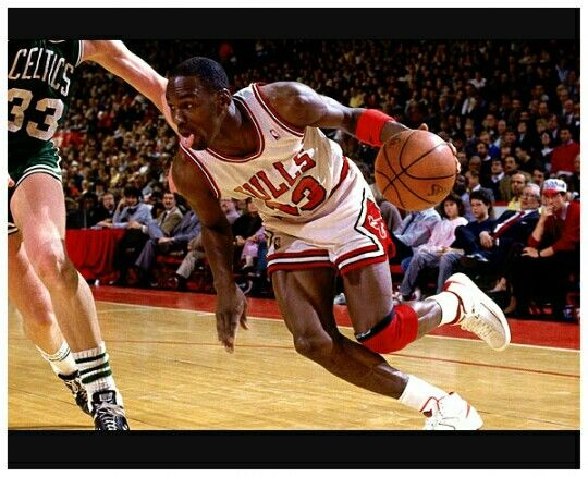 Dci pro basketball