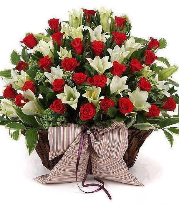 также может букеты цветов для подруги в день рождения отзывы рецензии, рейтинги