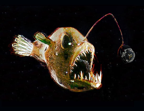 Case Studies Angler Fish Illustration Step 4 Scan The Line Art And
