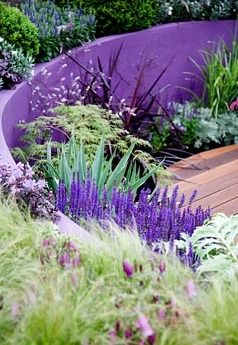 Look at how the purple wall accents the purple flowers and lighter foliage around it. Good use of color in the landscape, brings a bright airy feeling to it. Landscape design, hardscape, landscape architecture, gardening