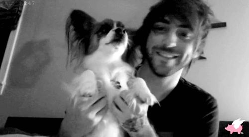 GIF - Alex Gaskarth of All Time Low with a puppy