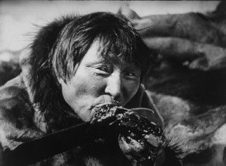 """Nanook (Allakariallak) enjoys a taste of his hunting spoils in """"Nanook of the North."""" -- Nanook of the North, The Wedding of Palo and other Films of Arctic Life Blu-ray Review"""