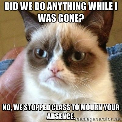 Grumpy Cat  - Did we do anything while I was gone? No, we stopped class to mourn your absence.