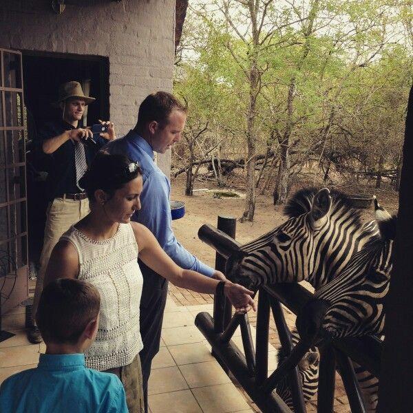 Visitors at Honey Badger Safari House.Marloth Park. Photo by Jonathan Couzens
