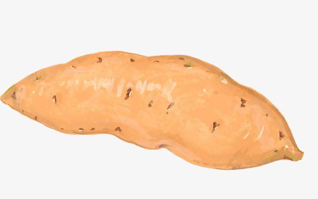 Sweet Potato Sweet Potato Food Png Cartoon Potato