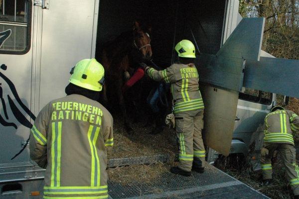 Transporter droht samt Pferd umzukippen » Feuerwehr-Magazin