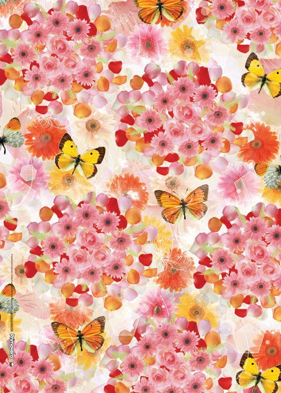 Captura estas mariposas para tus empaques y crea maravillosos diseños