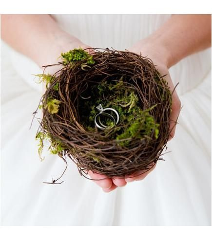 I'm going to try to find a birds nest but if I can't I still want a photo like this for the rings :) Maybe even one with Brett hands under mine.