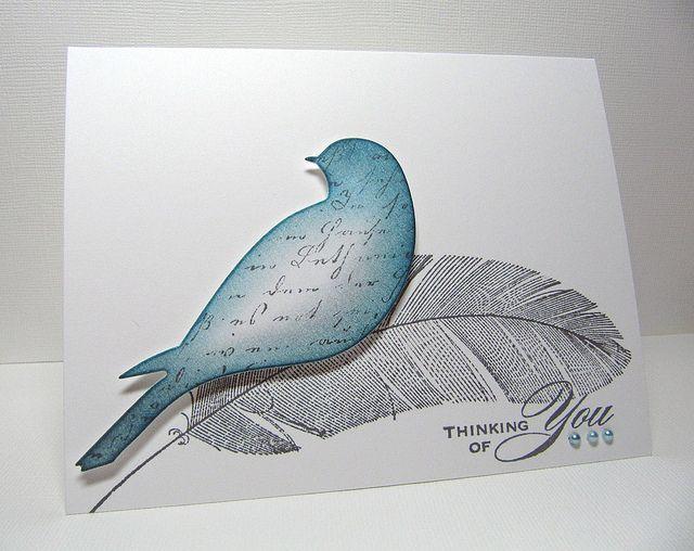memory box bird die, feather (HA)
