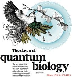 """What is """"Quantum Biophysics? It sounds like a made up discipline doesn't it? Well it's not. Succinctly, Biophysics is an interdisciplinary science that uses methods and theories from Physics to study Biological systems (life). Quantum mechanics is a subdiscipline of Physics that studies and analyzes the physical phenomena at microscopic scales, where the action is on the order of the Planck constant. Quantum mechanics departs from Classical Mechanics primarily at the quantum realm of atomic…"""