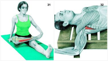 The full list of what muscles you're stretching when you do certain yoga moves/stretches