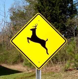 crossing sign - Deer leaping is sending signal to drivers that sometimes deer leap out of the area and to watch out for them
