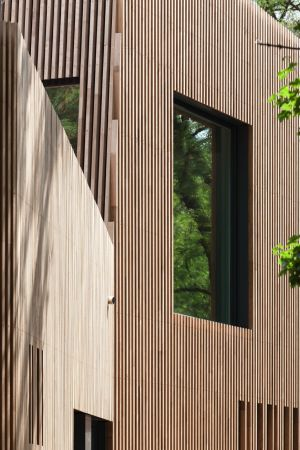 Ecole Voltaire, Berlin, Kantine, Martin Schmitt, Holz, timber, school, restaurant