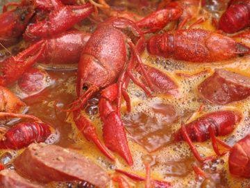 crawfish boil, mmmmmmm.