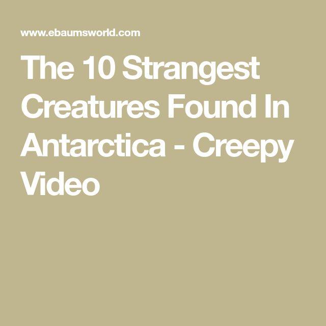 The 10 Strangest Creatures Found In Antarctica - Creepy Video