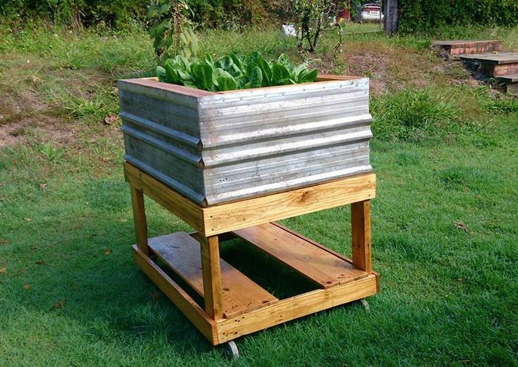 Planter Box made from pallet wood, old tin sheets,discarded plastic drum and old swivel wheels to make it moveable.