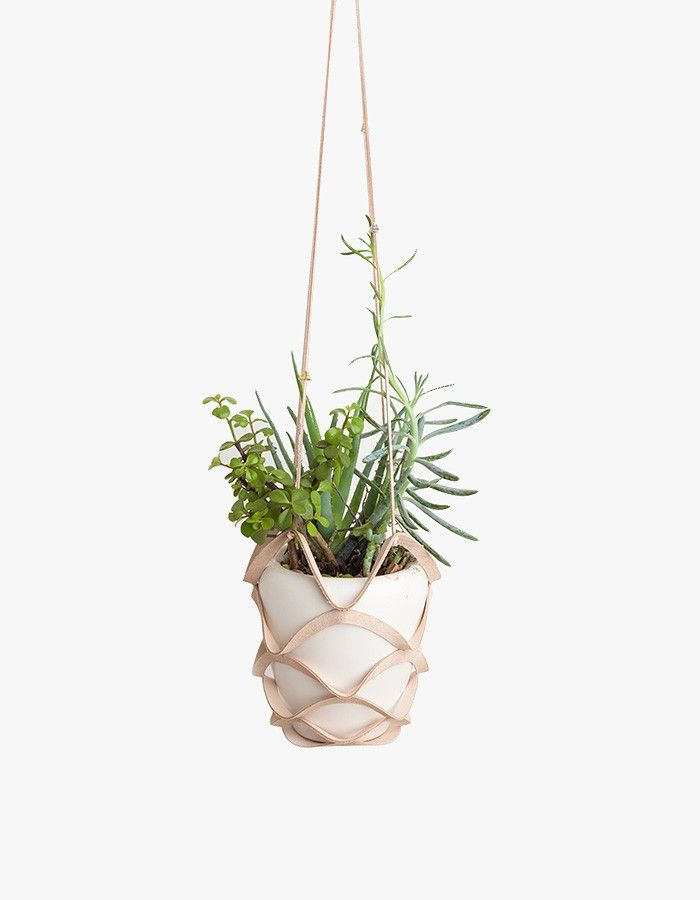 Handmade leather plant hanger from Cold Picnic. Features