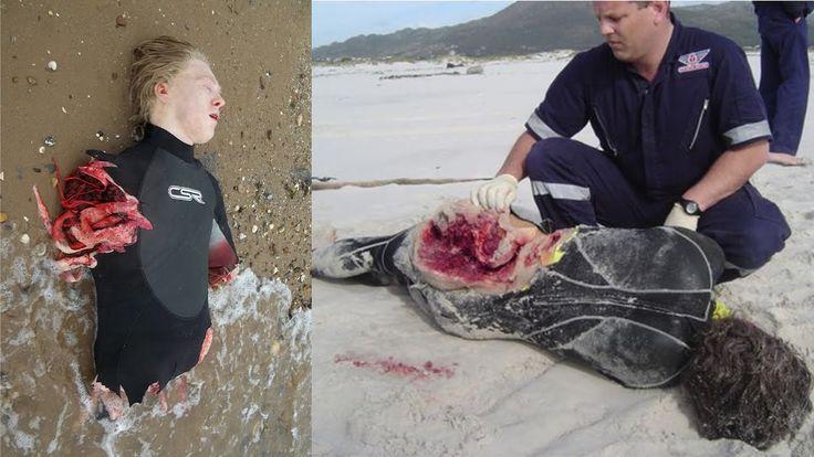 10 Real Shark Attacks Caught On Camera 2016