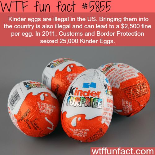 Don't bring Kinder eggs to the USA - WTF fun facts--I miss kinder eggs!!
