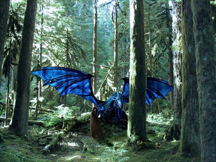 Twitter (June 22): Christopher Paolini: Fan art #7 — Saphira near Ellesméra with Eragon: pic.twitter.com/UxgKa5Q5Ge <-- AAAAA!!!!