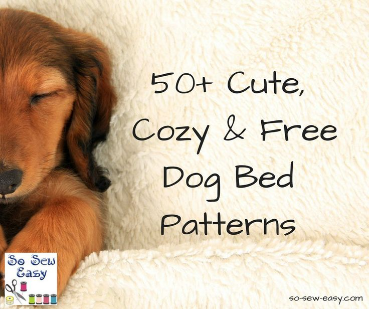 Attractive Free Pet Sewing Patterns Collection - Easy Scarf Knitting ...