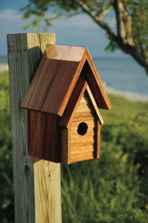 bird house birdhouse with a line roof howtobuildabirdhouse bird rh pinterest com