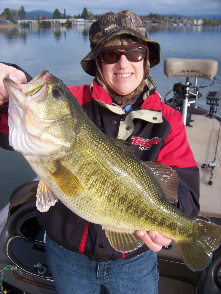 17 best images about fishing on pinterest rigs lures for Clear lake fishing